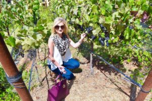 Did you catch my blog post on Napa California andhellip