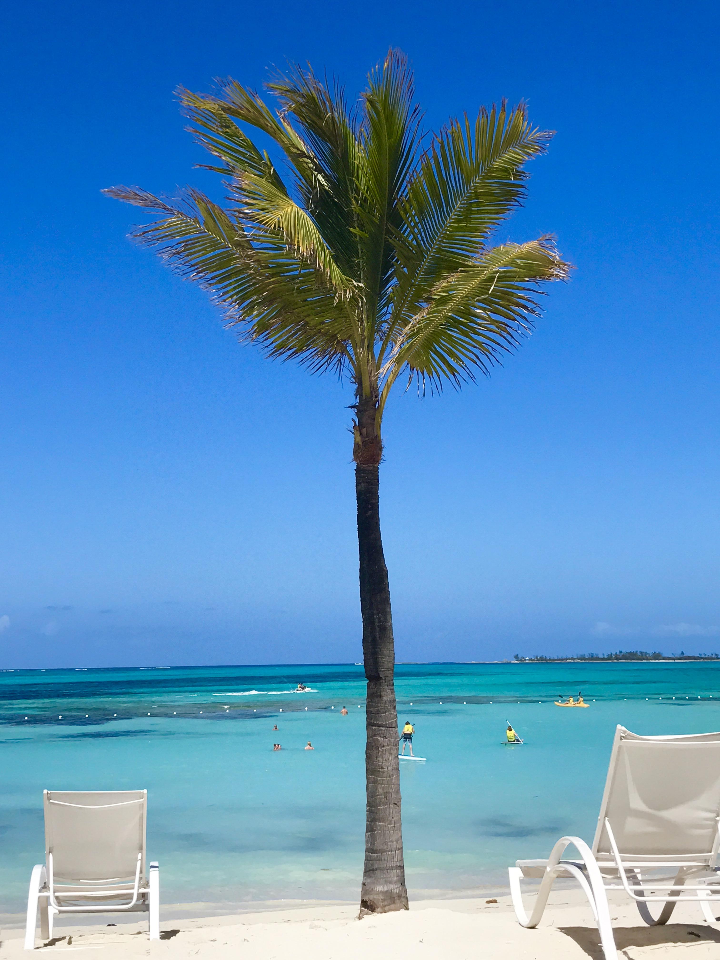 Travel Guide 9 Days In The Bahamas Melia Nassau Beach