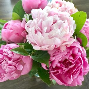 The most perfect pink peonies! These are from my amazinghellip