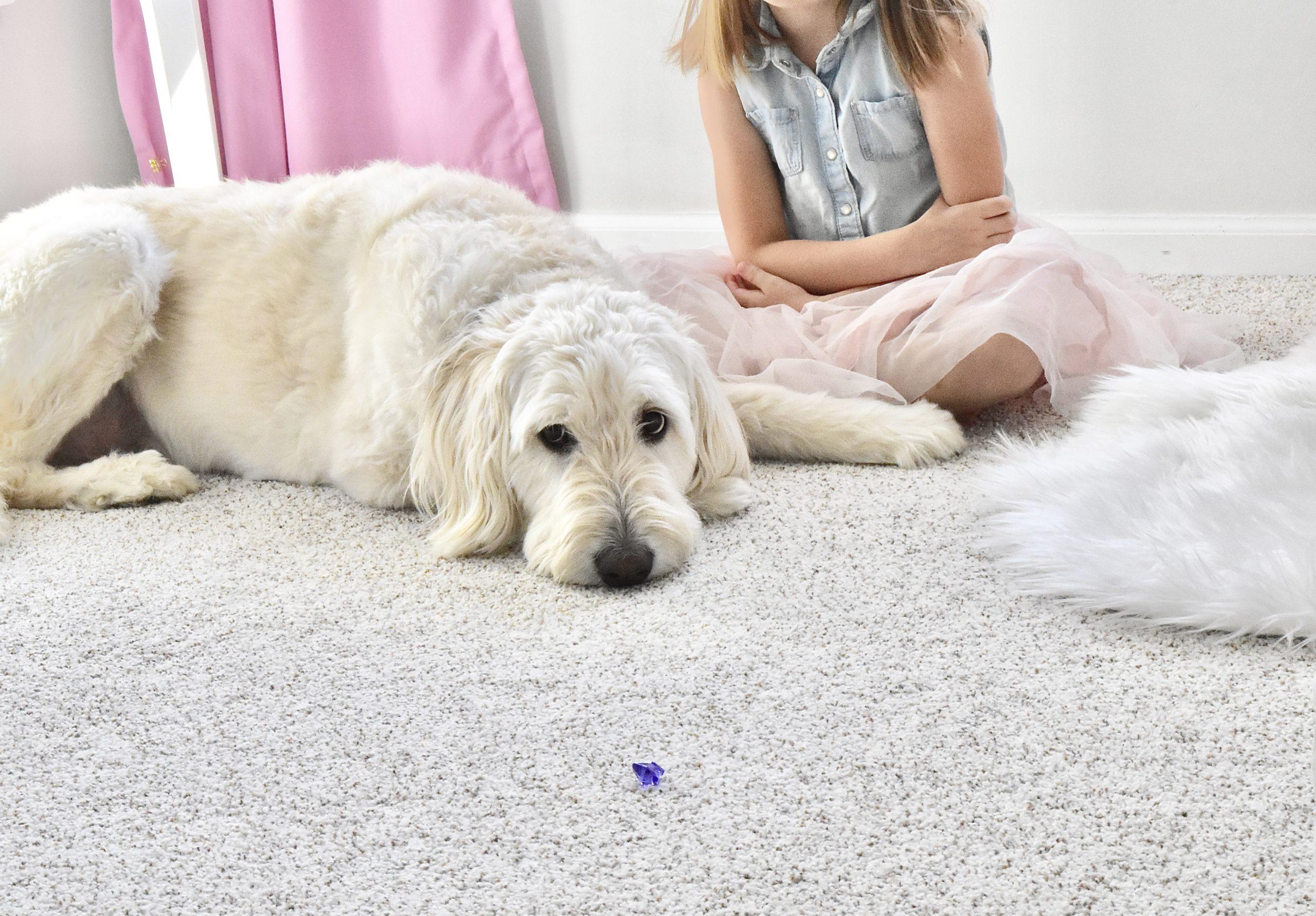 Carpet & Rug - Dog and Girl