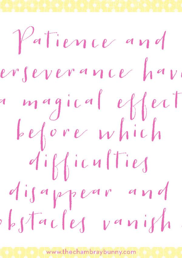 Motivation Monday: Patience & Perseverance