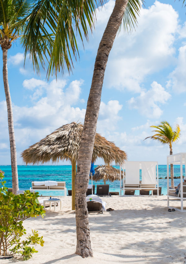 Travel Guide: 9 Days in The Bahamas! Melia Nassau Beach Resort Review