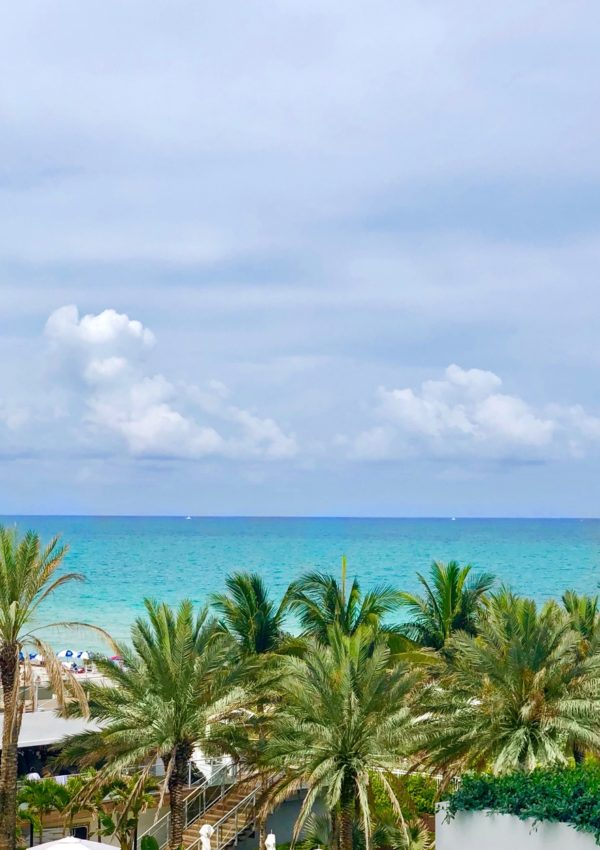 A Week in Miami Beach! Eden Roc Resort Review